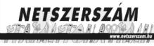 Netszerszám webáruház